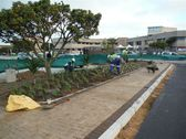 greenacres-shopping-mall-port-elizabeth-landscaping-5